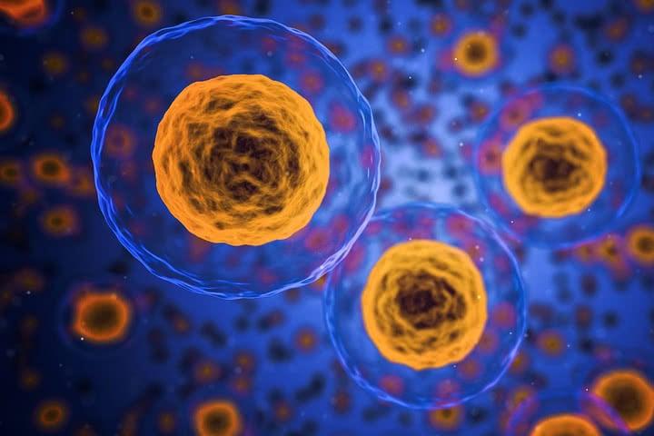 Les promesses de l'arsenic en oncologie