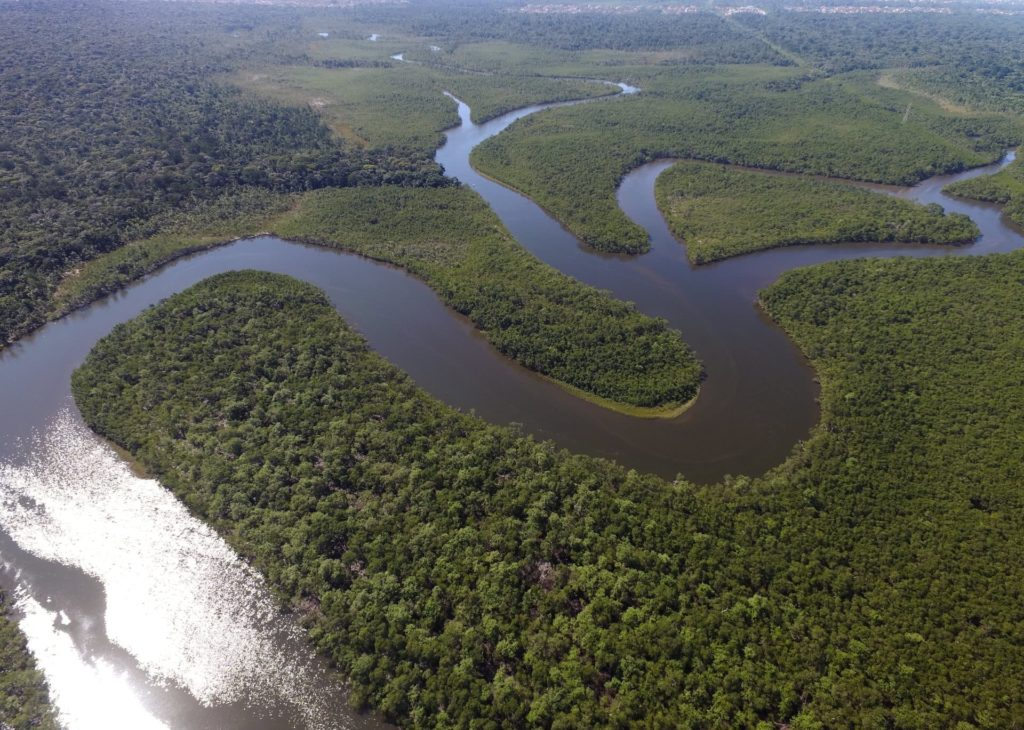 actu-nov18-environnement--amazonie